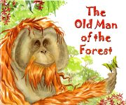 Old Man of the Forest001
