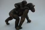 Trudy & Peggy - MonkeyWorld